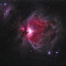 Orion Nebula,                                Adriano Massatani