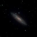 NGC 253 The Sculptor Galaxy,                                Yu-Peng Chan