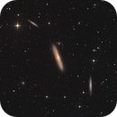 NGC 4216 and friends,                                Bart Delsaert