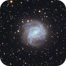 M83 The Southern Pinwheel Galaxy,                                Tim Anderson