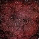 IC1396 Elephants Trunk Nebula,                                Roland Schliessus