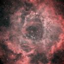 NGC 2244 (Rosette Nebula),                                Klaus Haevecker