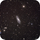 Galaxy M106 #1,                                Molly Wakeling