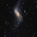NGC 660,                                GONZALO