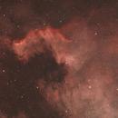 NGC 7000,                                Ou Mingzhi