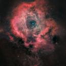 The Galactic Rose- with Hydrogen 2 panel mosaic,                                Matt Harbison