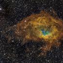 SH2-261 - Lower's Nebula,                                Richard Bratt