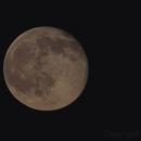 Moon,                                MeDoan