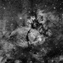 Fishhead Nebula H-alpha,                                Peter Kurucz