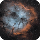 IC 1396, Elephant's Trunk,                                GregGurdak