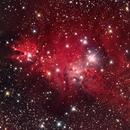 NGC 2264 Cone Nebula / Christmas Tree Cluster HaLRGB,                                Thomas Hellwing