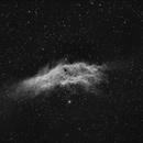 NGC 1499  California Nebula,                                Ed Magowan