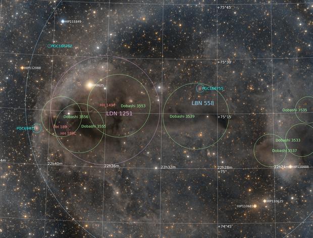 LDN 1251 - Humpback Anglerfish Nebula,                                Ara