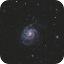 M101 AT6RC,                                Andrew Burwell