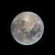 Moon - iPhone pic from my telescope 5-19-19,                                Kurt Zeppetello