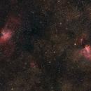 M 16 & 17: Eagle & Omega Nebula,                                David F
