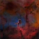 IC 1396 Elephant Trunk Nebula (Starless),                                Randal Healey