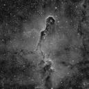 IC 1396,                                Enrique Arce