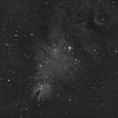 Cone Nebula in Ha,                                Tony