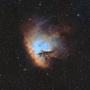 NGC 281 - Hubble Palette,                                Bart Delsaert