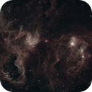 NGC 2074 region in Ha/Oiii with EdgeHD11 f/7,                                Freestar8n
