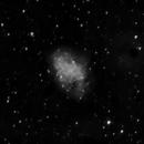 M1 Crab Nebula,                                Ed Bacon