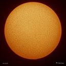 Sun - 7/6/2018,                                Damien Cannane