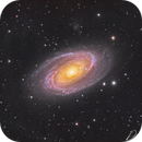 M81 (Bode's Galaxy) with IFN,                                David Wills (Pixe...