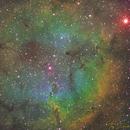 IC1396 Elephant Trunk Nebula,                                Tony Salmonte