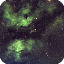 IC1318 Sadr region-Buttefly Nebula-HA--SHO-Meade triplet-ASI 1600,                                Adel Kildeev