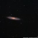 Sculptor Galaxy NGC253,                                Markus Bauer