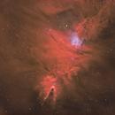 NGC 2264,                                pete_xl