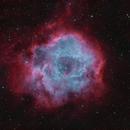 Rosette Nebula in HOO with RGB Stars,                                astronate