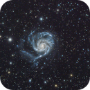 M101 Pinwheel Galaxy,                                Richard Pattie