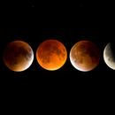 Super Harvest Blood Moon Total Eclipse,                                Chris R White