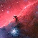 IC 434,                                Daniel Nimmervoll