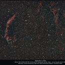 The Veil Nebula,                                Dominique Callant