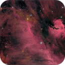 IC 2177 The Seagull Nebula,                                Randal Healey
