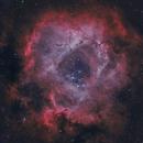 NGC2244 HOO,                                David Toole