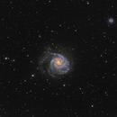 M101, ngc 5457, Pinwheel  Wide field,                                Vadim Kozatchenko