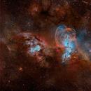 Liberty's statue nebula HOO.    NGC3603 and NGC3576,                                litobrit