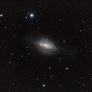 NGC 3521,                                Andrew Barton