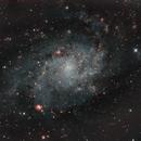 M33 - Triangulum Galaxy,                                Allen Koenig