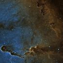 IC1396 Elephant Trunk Nebula,                                William Brown
