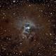 NGC 7023,                                Jerry Hulm