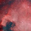 NGC 7000 North America Nebula,                                Wolfdrummer