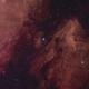 Mosaik von NGC 7000 und IC 5070,                                Peter Retzer