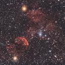 IC443 Jellyfish Nebula,                                Andrea Pistocchini - pisto92