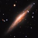 UFO Galaxy - NGC 2683,                                Michael Finan