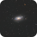 M 63- Sunflower Galaxy (2021),                                Terrance